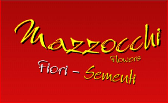 Mazzocchi Roberto & C. s.a.s.